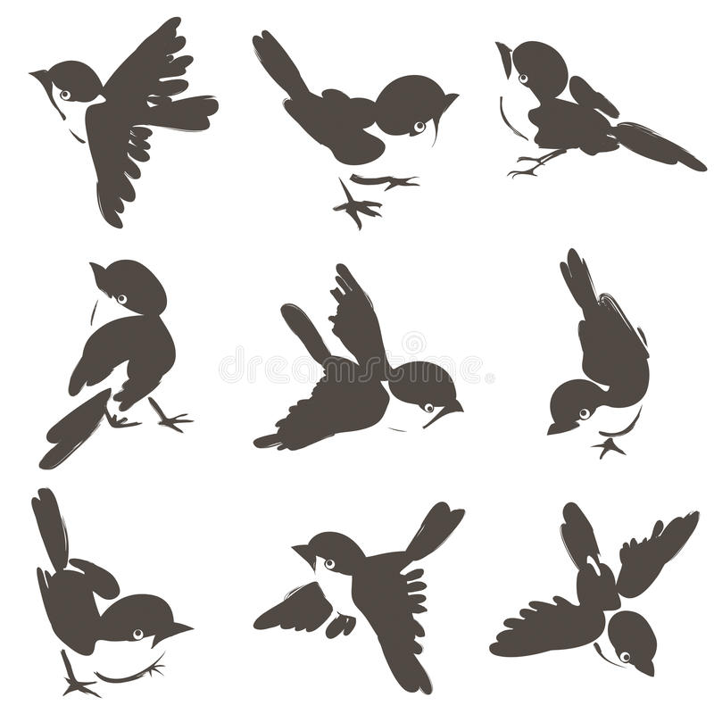 Download Nine sparrow poses stock illustration. Image of feathers - 23728970