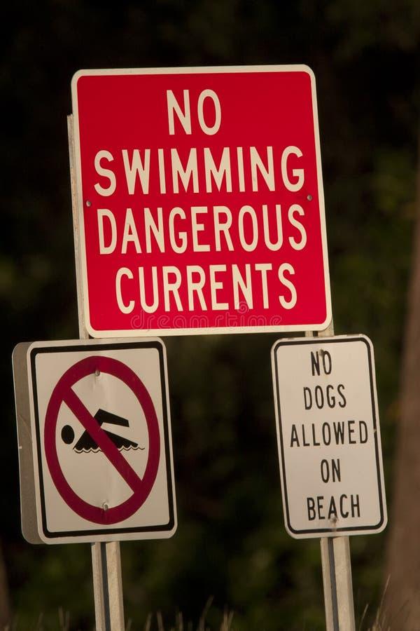 Ninguna muestra de la natación imagenes de archivo