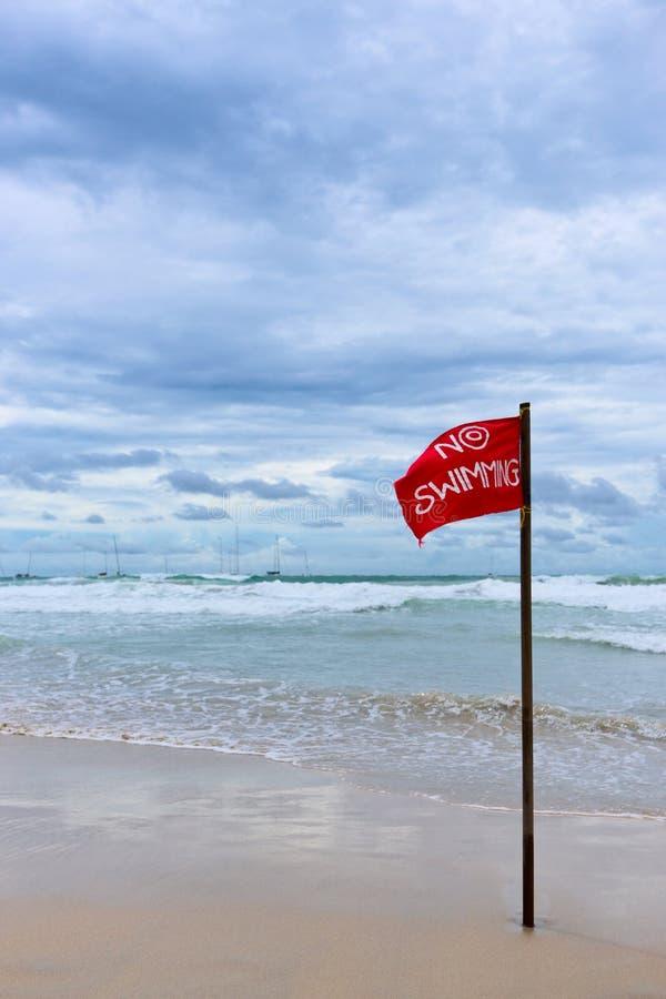 Ninguna natación imagenes de archivo