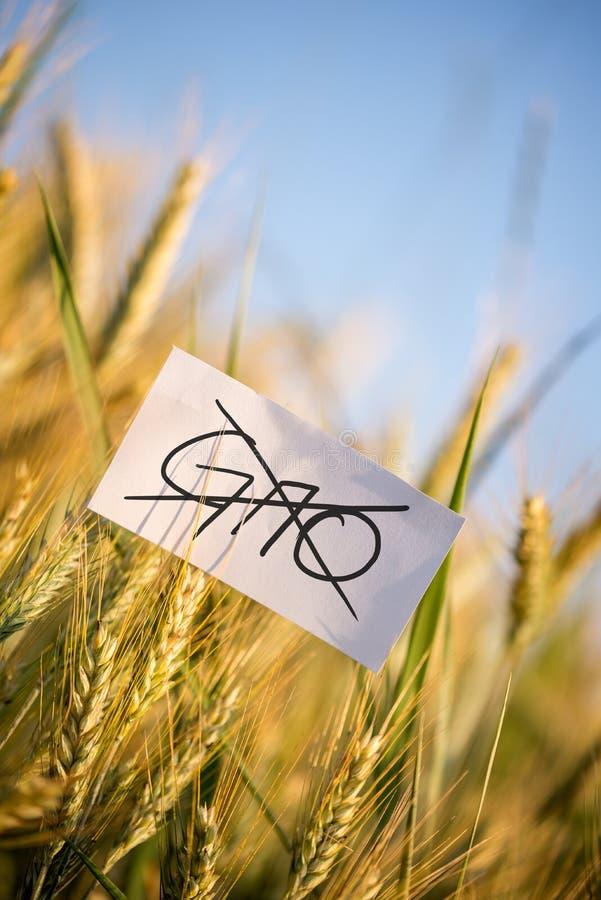 Ningunas cosechas de la OGM permitieron concepto foto de archivo