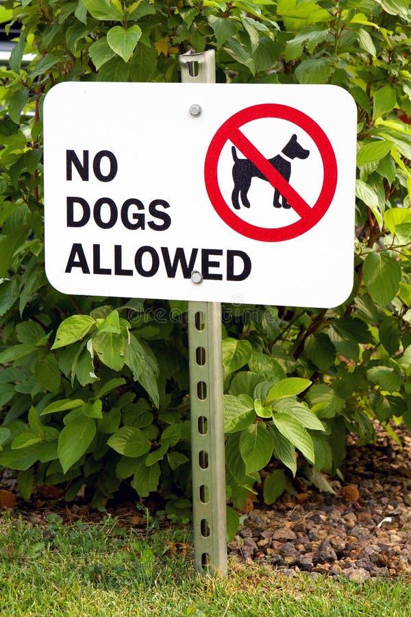 Ningunos perros no prohibidos la muestra imágenes de archivo libres de regalías