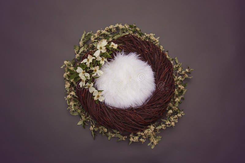 Ninho acolhedor da fantasia com fundamento macio e as flores brancas decorativas imagem de stock royalty free