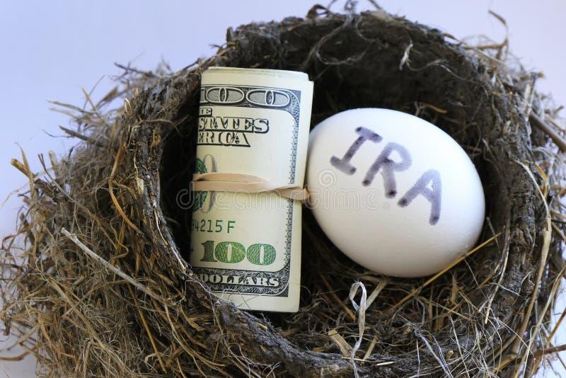Ninho com dinheiro e ovo imagem de stock royalty free