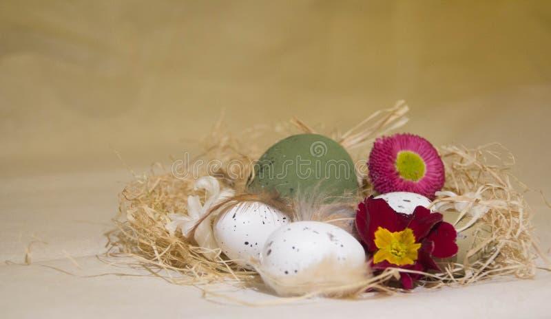 Ninho da Páscoa com flores imagens de stock