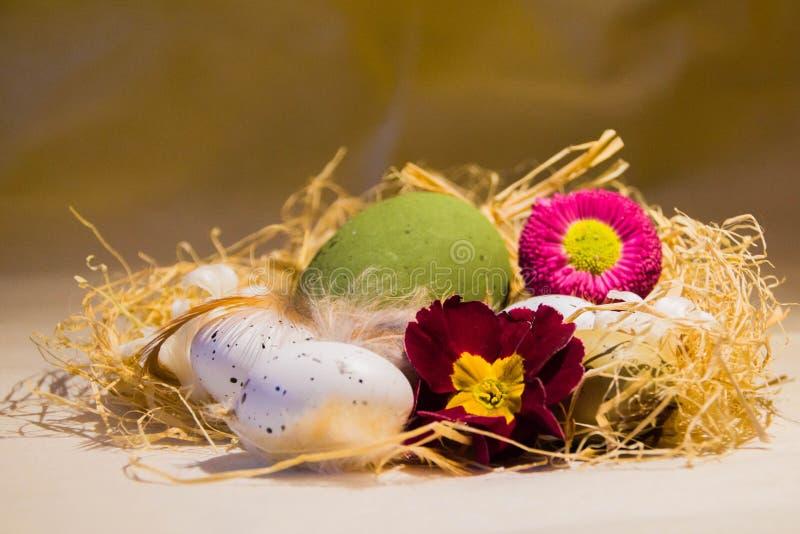 Ninho da Páscoa com flores imagens de stock royalty free