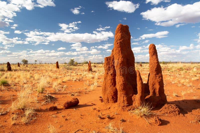 Ninho da térmita no meio do deserto com céu azul Ninho grande completamente da térmita com muitos ninhos no fundo foto de stock royalty free