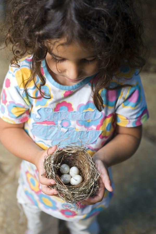 Ninho da terra arrendada da menina com ovos imagens de stock royalty free