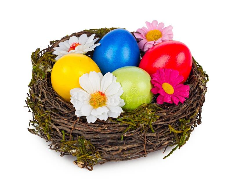 Ninho de Easter fotos de stock
