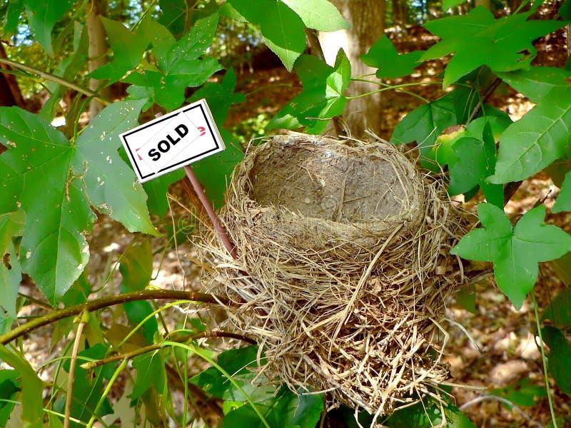 Ninho do pássaro - bens imobiliários 4 fotografia de stock