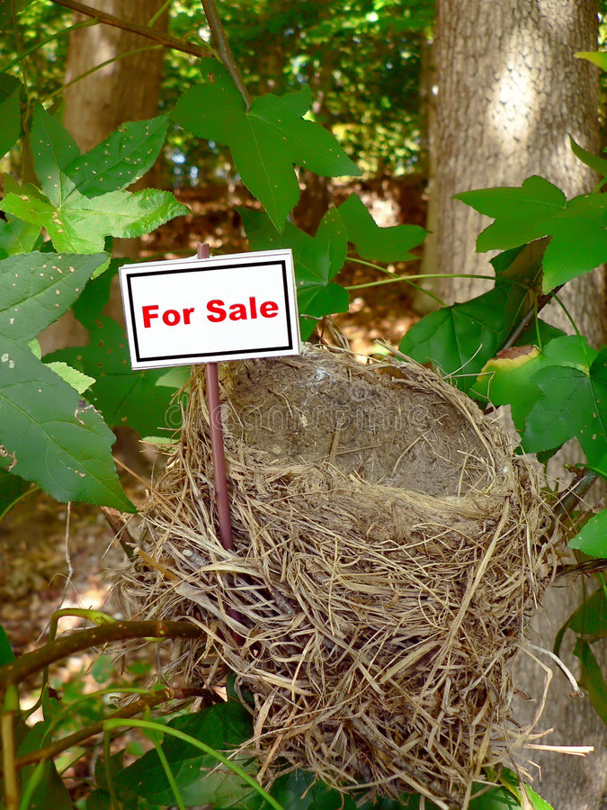 Ninho do pássaro - bens imobiliários 5 foto de stock