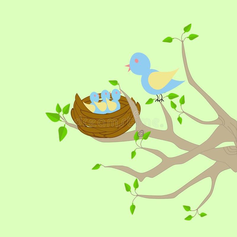 Ninho do pássaro em uma árvore ilustração stock