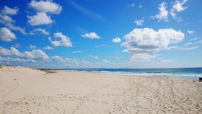Ninho dos falcões da opinião da praia @ fotografia de stock