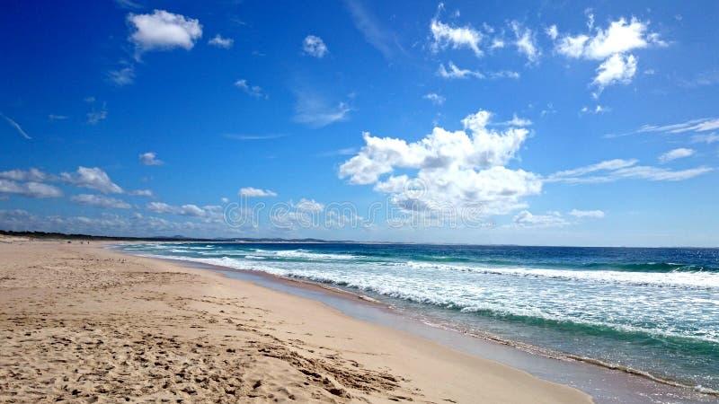 Ninho dos falcões da opinião da praia @ imagens de stock royalty free