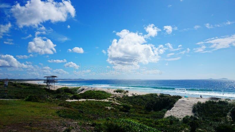 Ninho dos falcões da opinião da praia @ fotos de stock