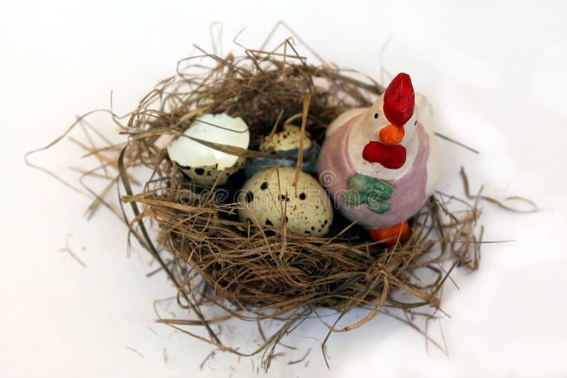 Ninho e ovos do pássaro imagem de stock