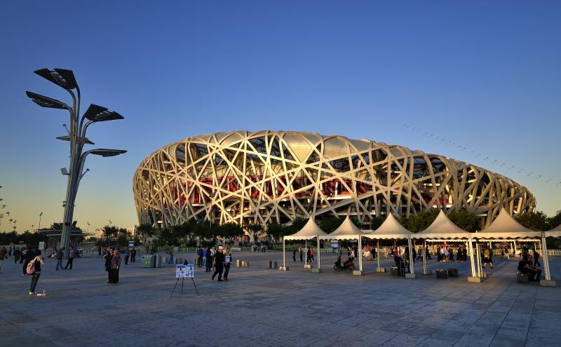 Ninho nacional do pássaro do estádio de Beijing China fotografia de stock royalty free