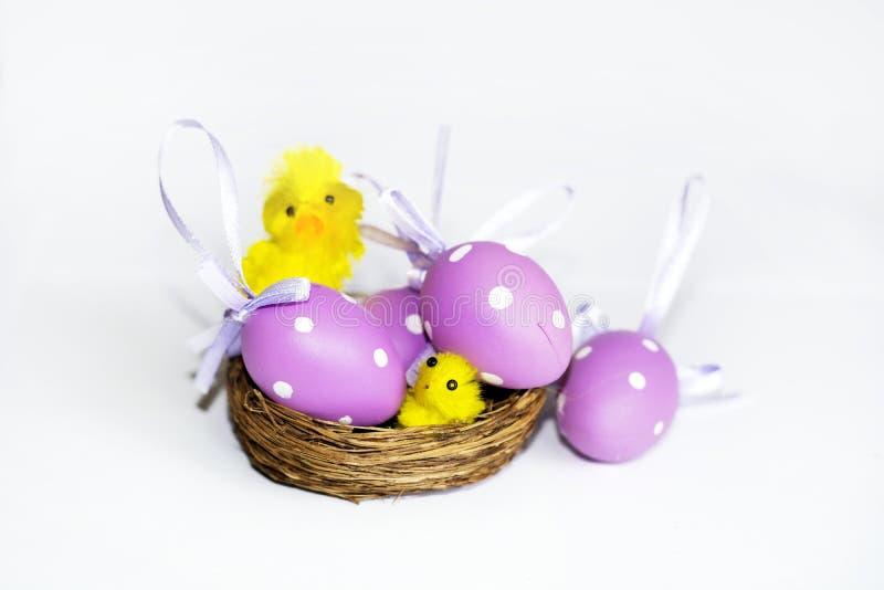 Ninho real com ovos da páscoa roxos fotos de stock royalty free