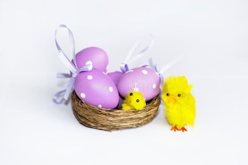Ninho real com ovos da páscoa roxos imagens de stock
