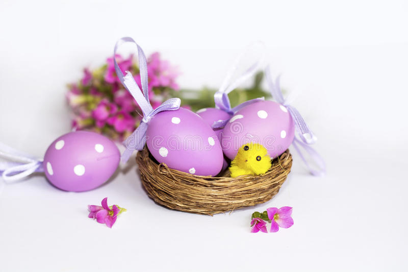 Ninho real com ovos da páscoa roxos fotografia de stock royalty free
