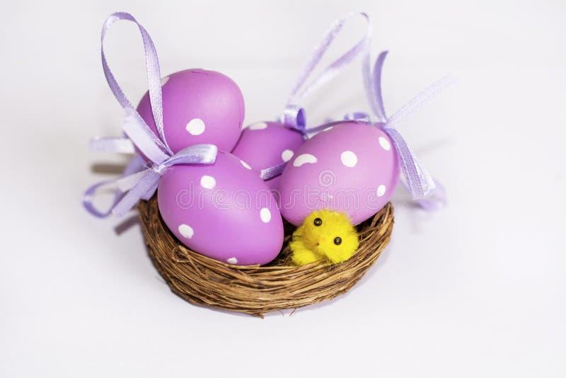 Ninho real com ovos da páscoa roxos imagens de stock royalty free