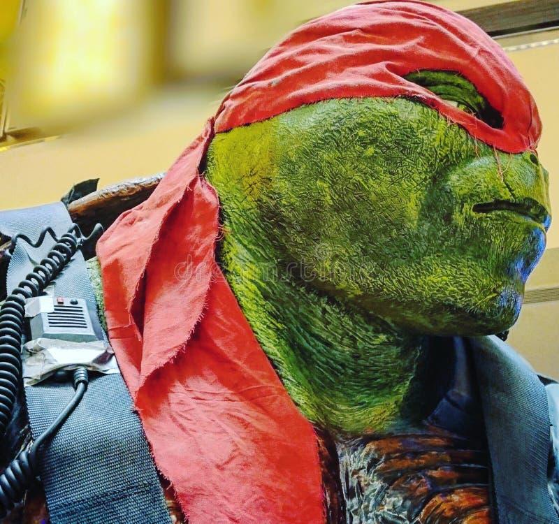 Ninja żółwie zdjęcie royalty free