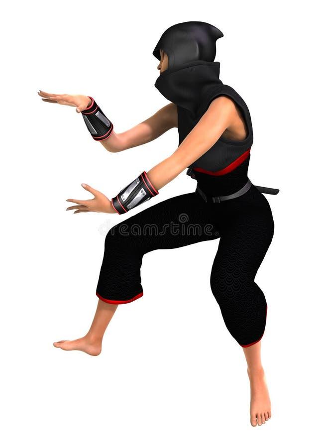 ninja illustration stock