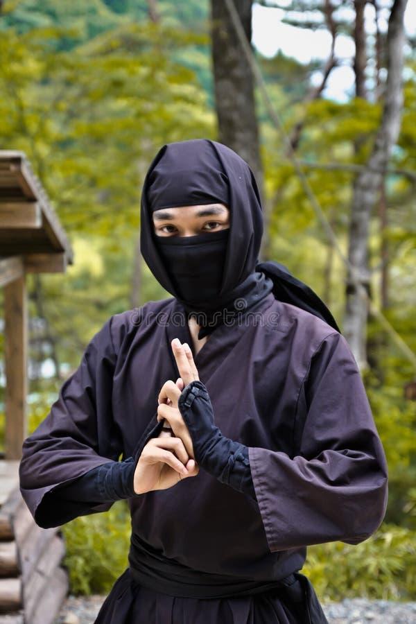 ninja royaltyfri bild