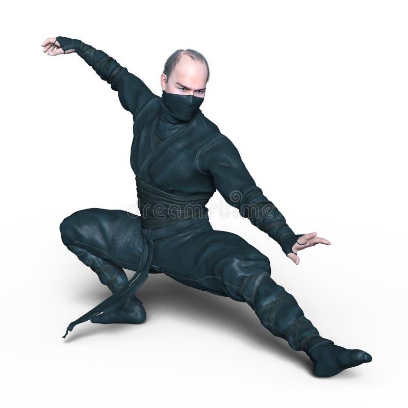ninja arkivfoto