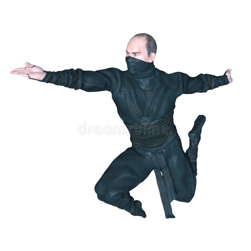 ninja royaltyfria foton
