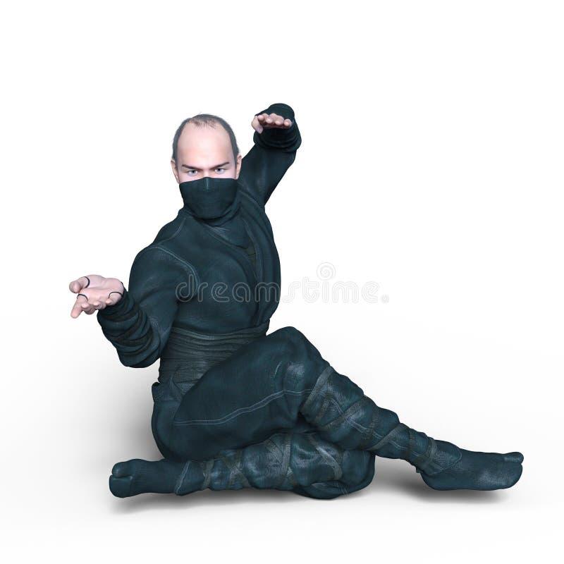 ninja arkivbilder
