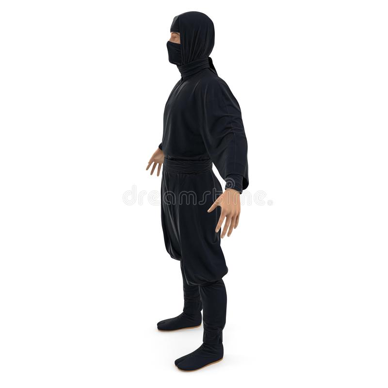 Ninja pozycji poza Na Białym tle 3d ilustracja, odizolowywająca royalty ilustracja