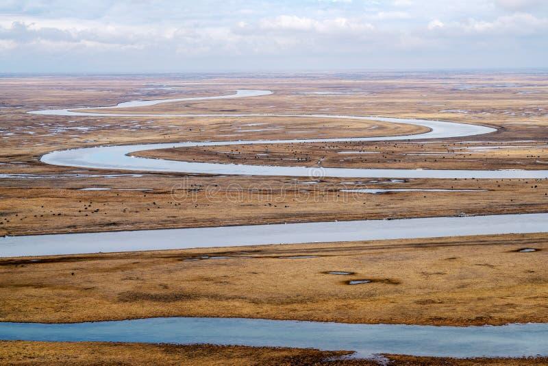 Nio v?nd och arton kr?kningar av den Kaidu floden i Bayanbulak i v?r arkivfoton
