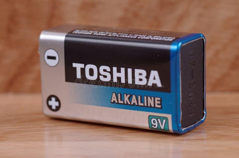 Nio-volt batteri royaltyfri fotografi