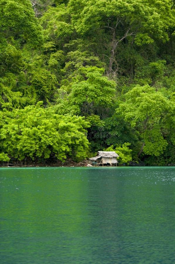 Download Nipa hut stock photo. Image of asia, coron, ecology, mountain - 20077630