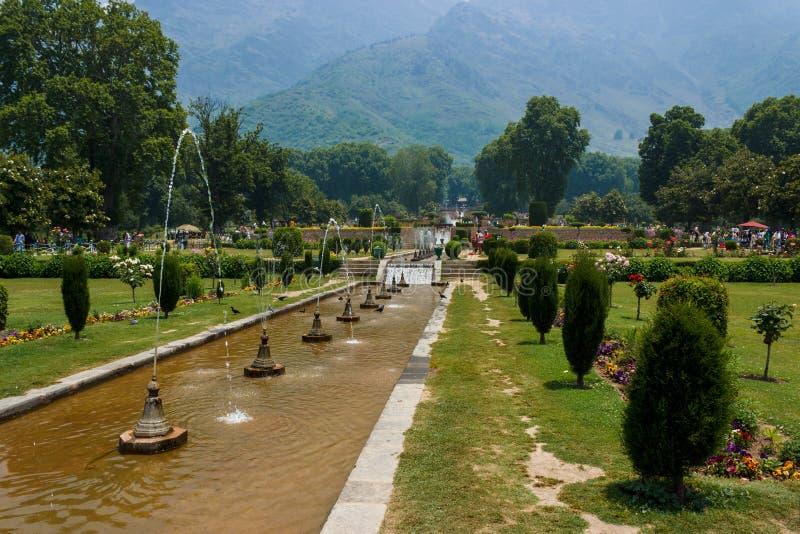 Nishat ogród, Srinagar zdjęcia stock