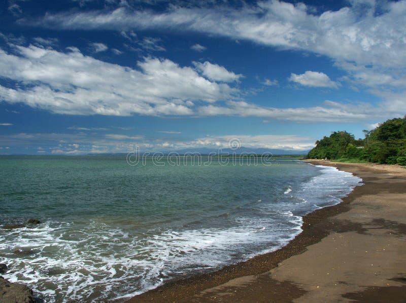 niska fala na plaży obrazy royalty free