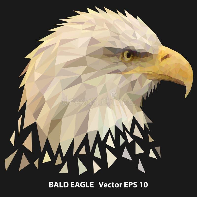 Niska poli- łysego orła głowa, poligonal ilustracja ilustracji