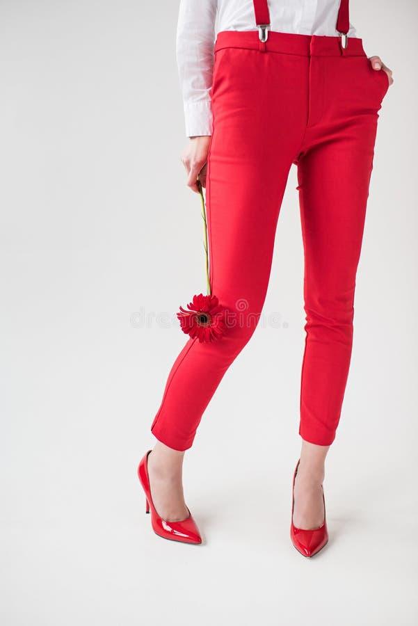 niska sekcja pozuje w czerwieni suspenders z kwiatem i spodniach elegancka dziewczyna, obraz stock