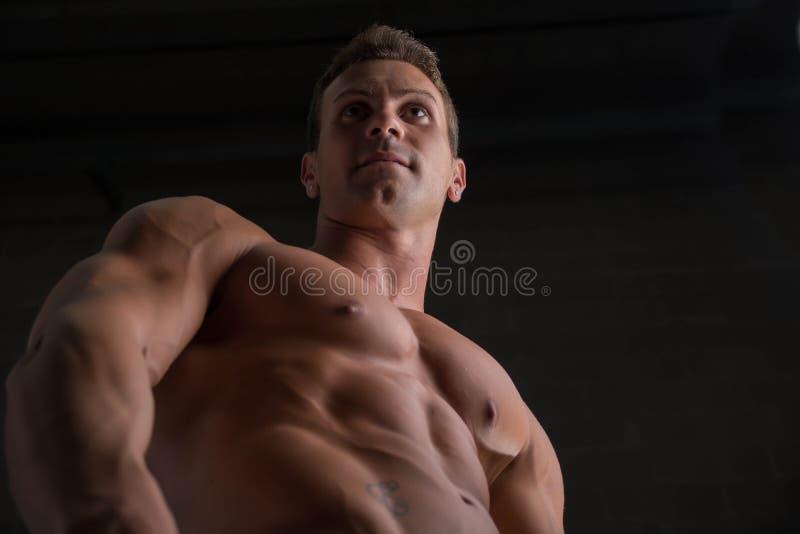 Niski kąt strzelał bez koszuli męski bodybuilder dalej obrazy royalty free