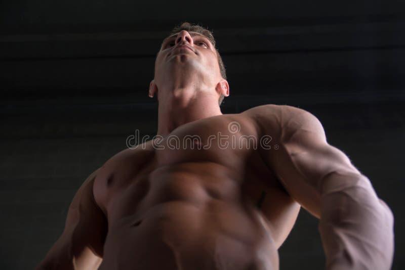 Niski kąt strzelał bez koszuli męski bodybuilder dalej zdjęcia royalty free