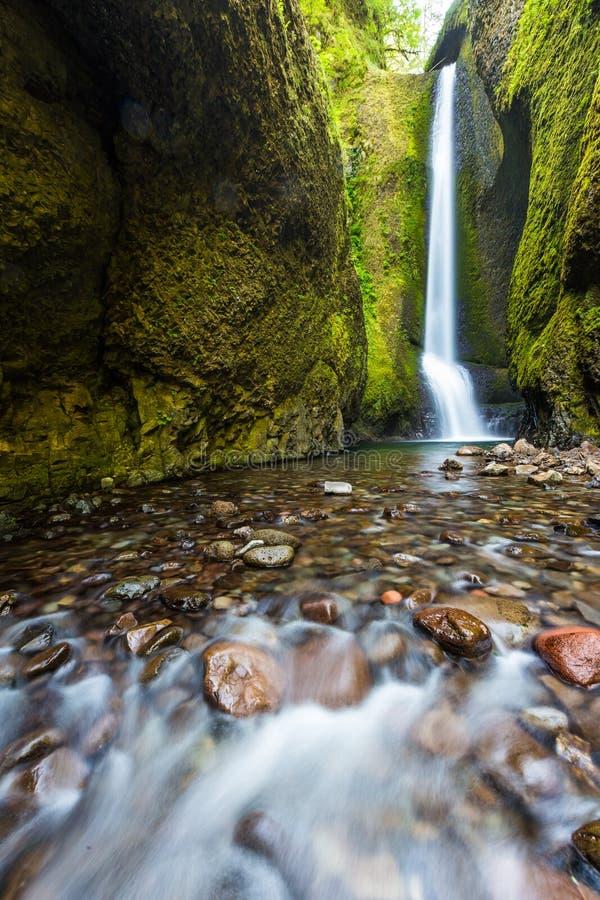 Niski Oneonta spada w lecie, Kolumbia rzeczny wąwóz, Oregon obraz stock