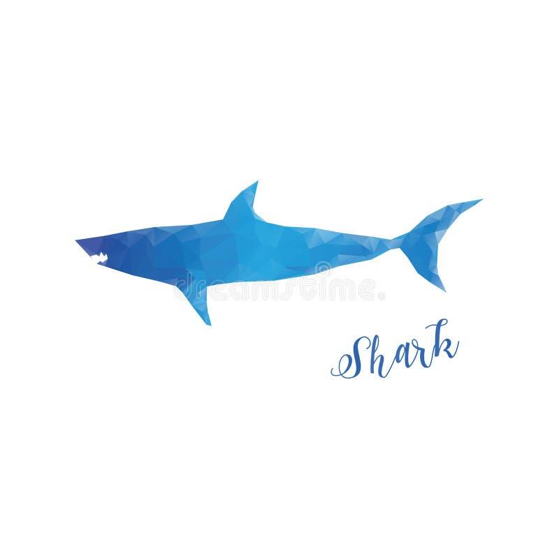Niski poli- rekin odizolowywający Błękitny rekin z literowaniem royalty ilustracja