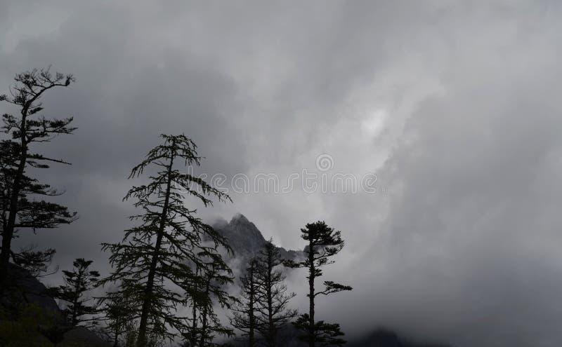 Niski widok góra wierzchołek zdjęcie stock