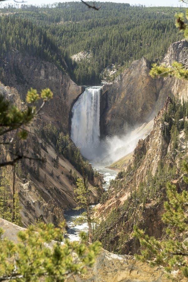 Niski Yellowstone Spada od artysty punktu obrazy royalty free