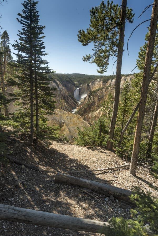 Niski Yellowstone Spada od artysty punktu obraz stock