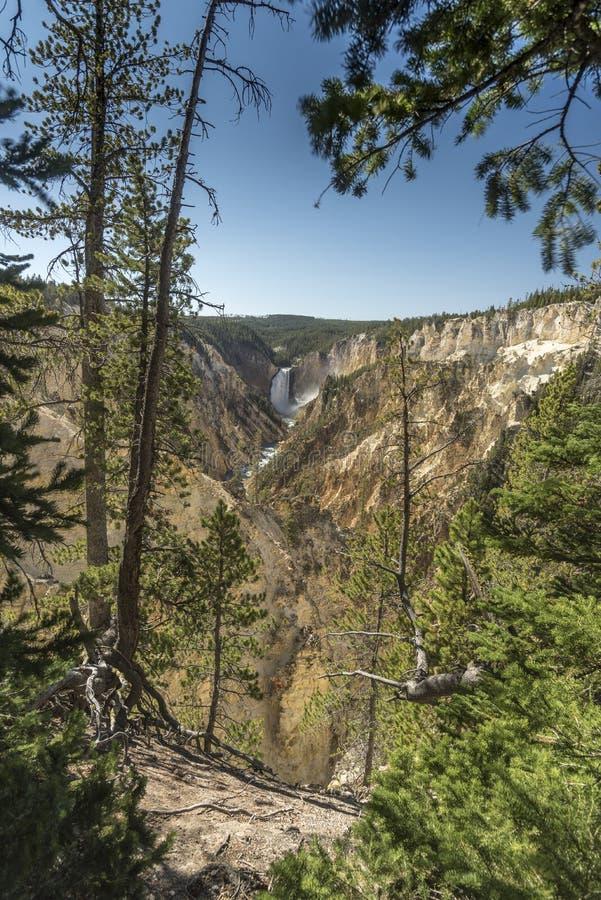 Niski Yellowstone Spada od artysty punktu obrazy stock