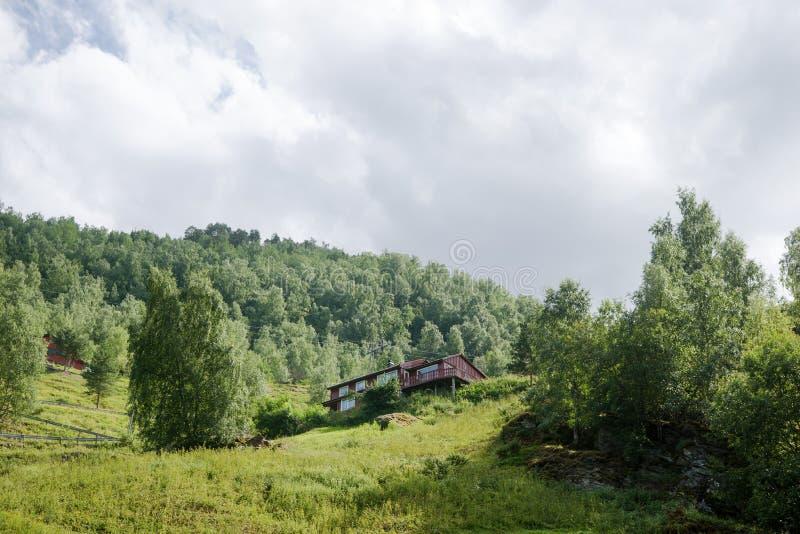 niskiego kąta widok drewniany dom i zielone rośliny w górach Aurlandsfjord Flama obrazy royalty free