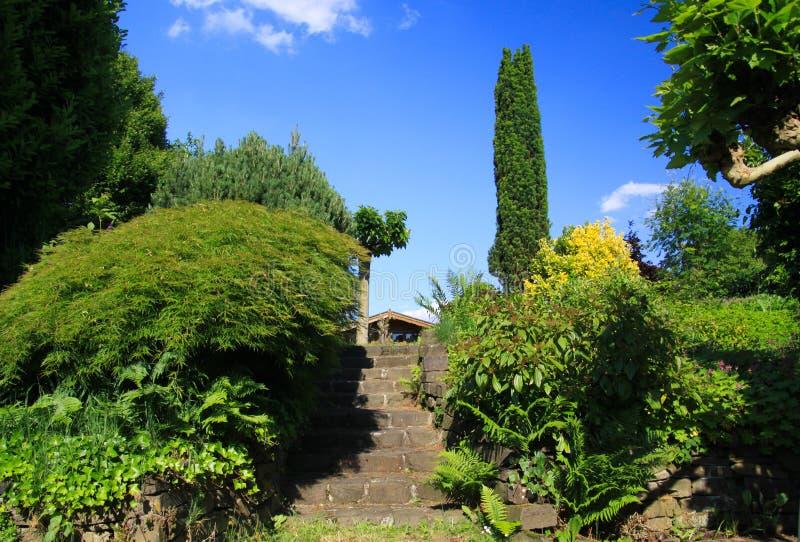 Niskiego kąta widok na kamiennych krokach w niemiec ogródzie z dwa zieleni drzewami przeciw niebieskiemu niebu i poziomami - Niem obrazy stock
