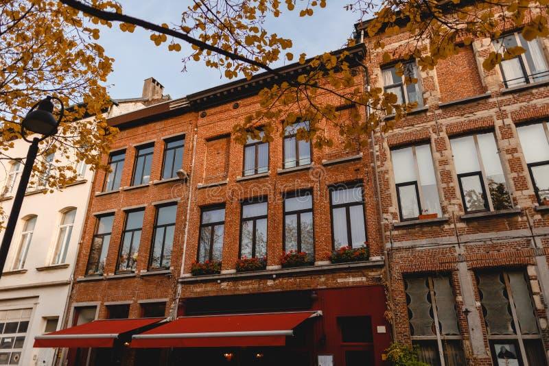 niskiego kąta widok piękni tradycyjni budynki na wygodnej ulicie Antwerp, Belgia zdjęcie stock