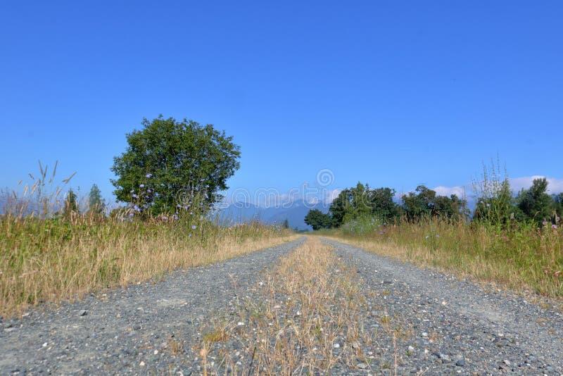 Niskiego kąta Wiejska droga gruntowa fotografia stock